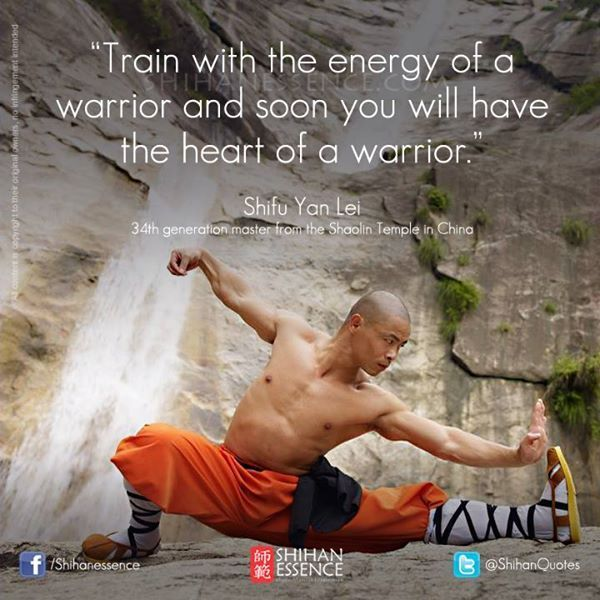 Kung Fu Quote Train with the energy of a warrior and soon you will have the heart of a warrior Follow Back