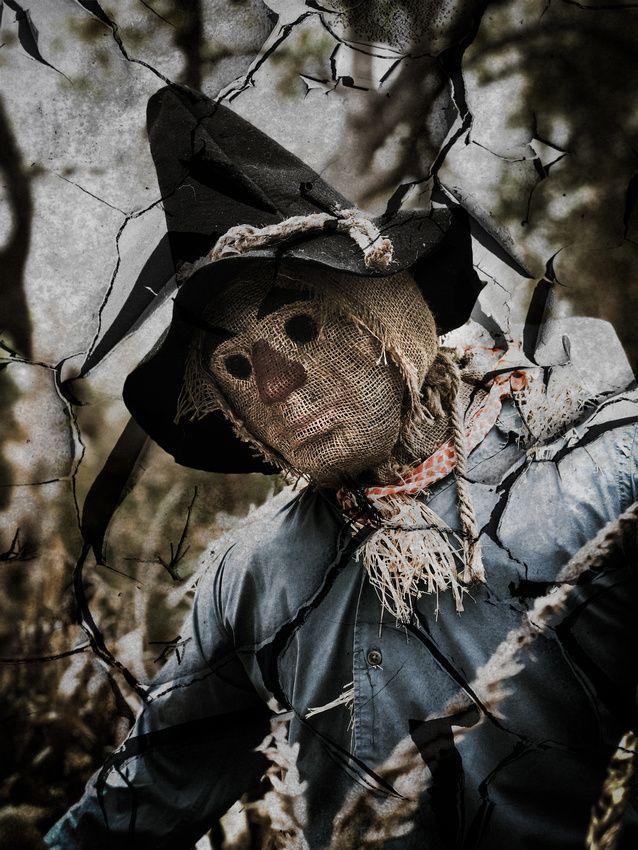 Scarecrow at Dallas Arboretum