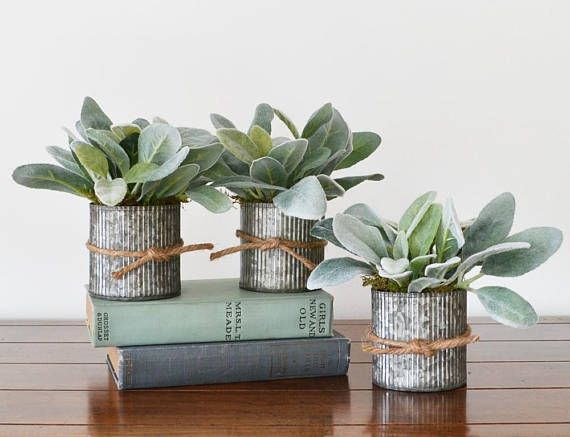 Galvanized Pots Of Lambs Ear Farmhouse Centerpiece Modern Etsy Artificial Plants Artificial Plant Wall Artificial Plants Outdoor