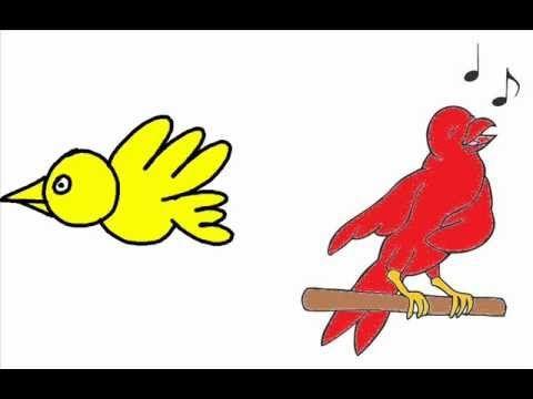 musicograma carnaval de los animales pájaros