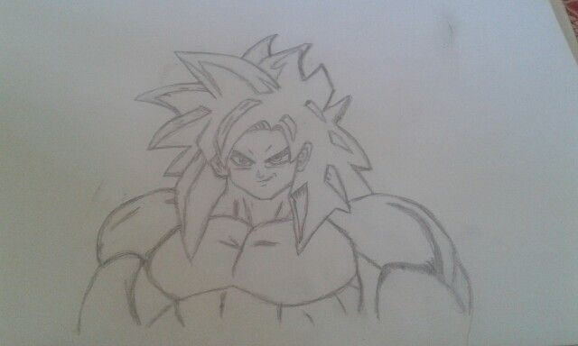 My Goku super sayian four.
