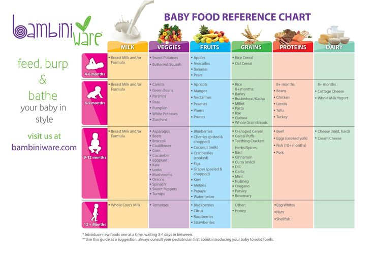 Homemade Baby Food Reference Chart- when to introduce new foods to your baby made easy!