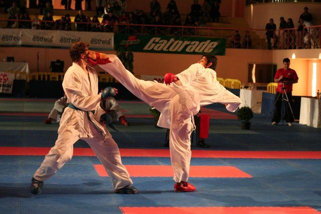 wkf karate