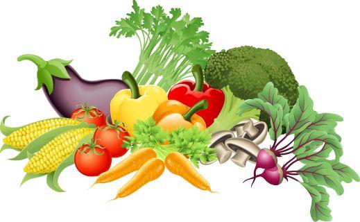 clip art food vegetables - photo #6
