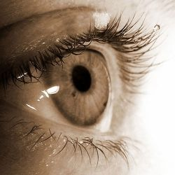 Herbal Remedies For Dry Eyes - How To Relieve Dry Eye Syndrome Naturally | Search Home Remedy