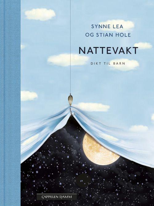 Stian Hole (cover art), Nattevakt
