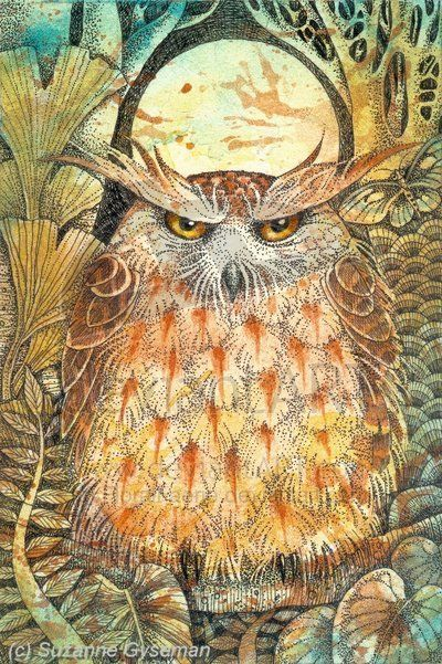 owl by Suzanne Gyseman