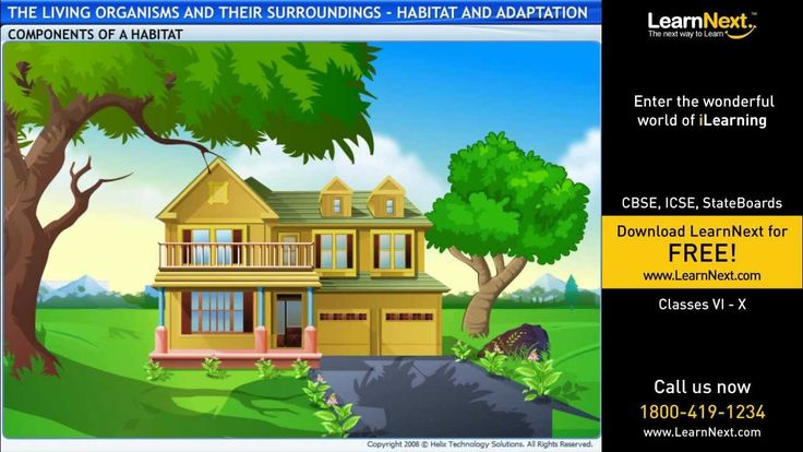 The Living Organisms And Their Surroundings -- Habitat and Adaptation - ...