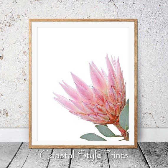 Protea Flower Printable Wall Art Printable Art Bedroom Print Pink Decor Blush Pink Print Protea Wall Art Protea Poster Floral Wall Decor In 2020 Protea Flower Printable Wall Art Printable Art