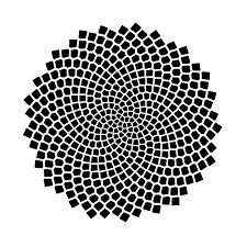fibonacci sequence - חיפוש ב-Google