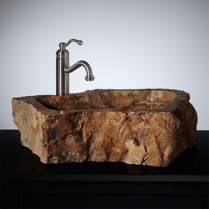 18 Best Petrified Wood Vessel Sinks Images On Pinterest