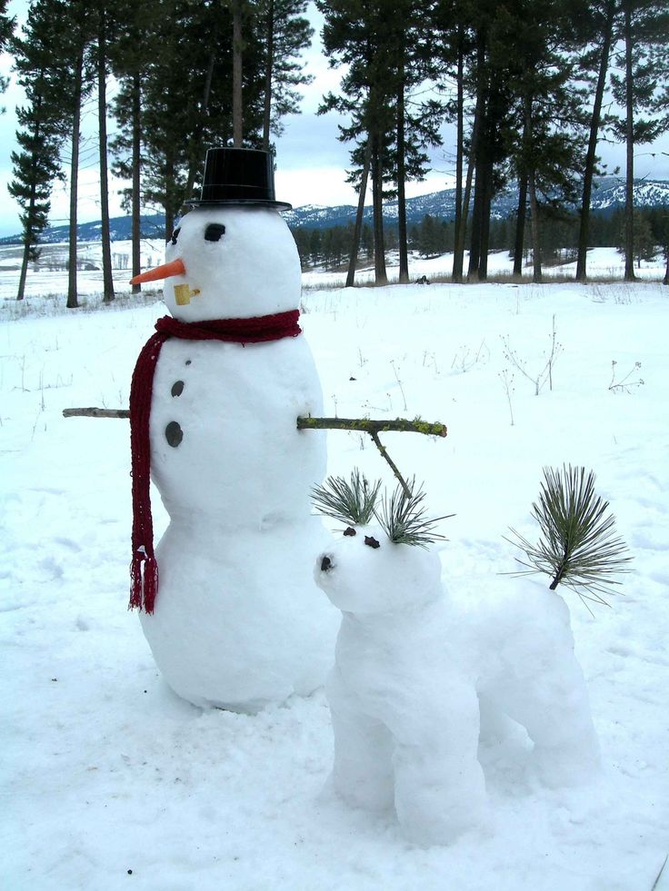 Snowman And His Snowdog  <3