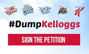 Tony Perkins, host of the Family Research Council's Washington Watch radio show, discussed the #DumpKelloggs boycott with Breitbart News CEO Larry Solov on Monday.
