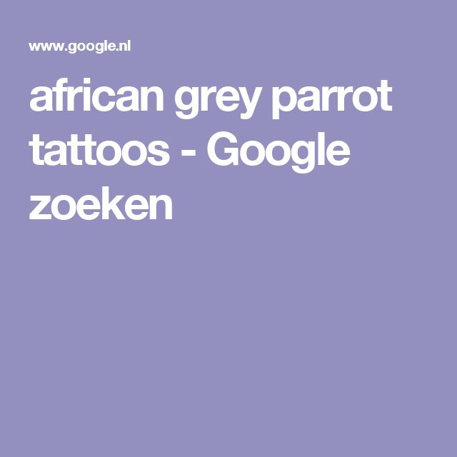 african grey parrot tattoos - Google zoeken