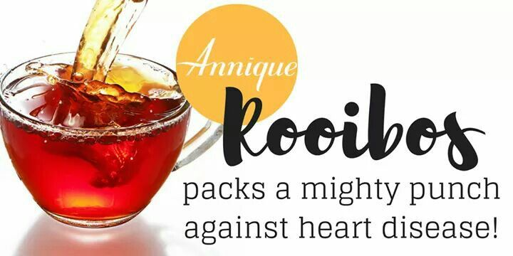 Already considered one of the most powerful superfoods on the market today, Rooibos tea's antioxidant army also packs a protective punch against heart disease, research shows. Read all about the new medical research being done regarding Rooibos and heart disease!