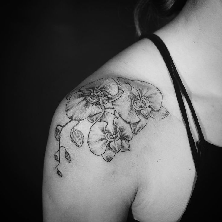 По своему эскизу Tatts Tattoo Tattoos Ink Inked: Image Result For Orchid Tattoo Black And White
