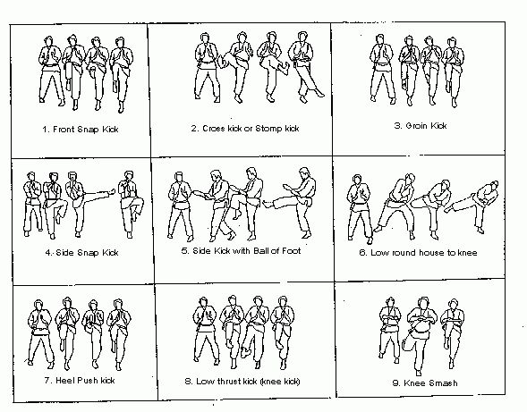 drawings of kicking techniques  isshinryu karate