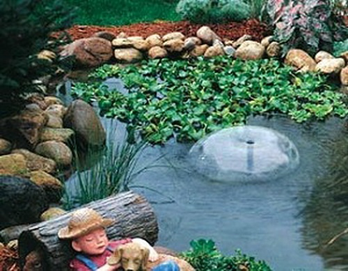 Feng Shui Backyard Pond : Garden Pond, I like the rocks around the his pond, very natural!
