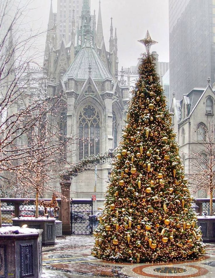Christmas in Manhattan. St. Patrick's Cathedral.
