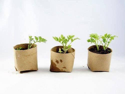 Tra poco sarà primavera, facciamo germogliare i nostri semi utilizzando materiale di riciclo come questi rotoli di carta igienica terminati. Basterà ripiegare il fondo in modo da creare una chiusura riempire con un po' di terriccio e seminare. #RicicloCreativo  SEGUICI SU: www.facebook.com/CreoEco
