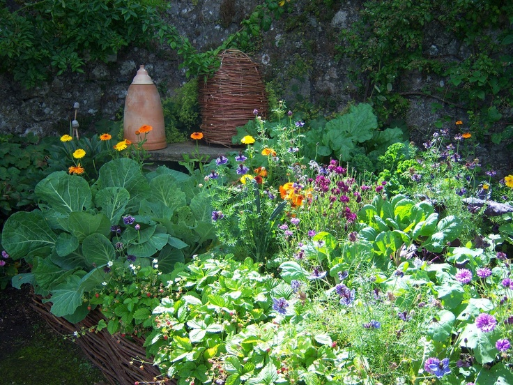French Kitchen Garden Potager - Bing Images