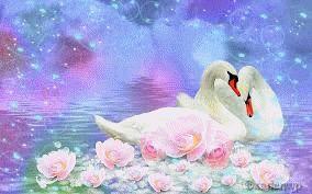 El Dios que se convirtió en cisne por amor.