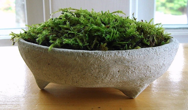 Zen Concrete Handmade Mini Moss Bowl Planter Home Decor
