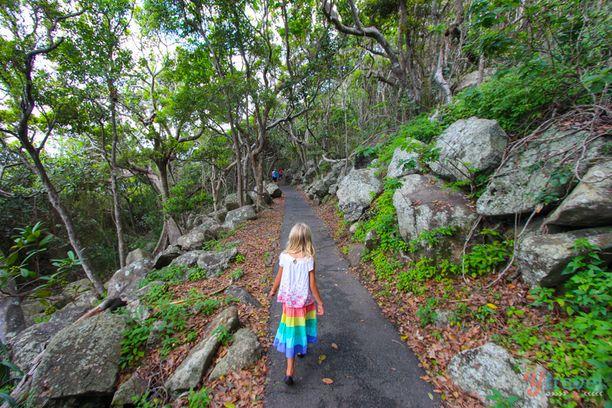 Burleigh Head National Park, Burleigh Heads, Australia — by Caz and Craig @yTravelBlog. One of my favourite walks on the Gold Coast is the coastal loop trail through Burleigh Heads National Park. You'll...