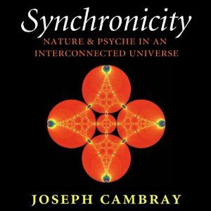 Synchronicity: Nature and Psyche in an Interconnected Universe: Carolyn and Ernest Fay Series in Analytical Psychology | [Joseph Cambray]