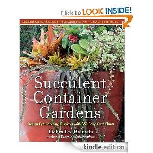Succulent Container GardensContainer Gardens, Garden Design, Succulents Container, Succulent Containers, Eye Catching Display, Design Eye Catching, Easy Cars Plants, 350 Easy Cars, Gardens Design