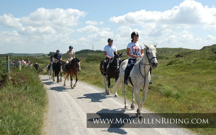 A.I.R.E Approved Riding Establishment with Qualified Professional Instructors with Moycullen Riding Centre