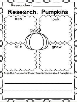 Plan for Pumpkins - It's Not Too Late!