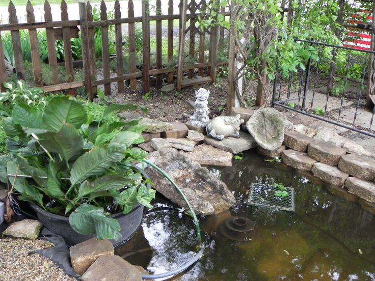 1000 images about pond on pinterest pedestal sink a for Pond waterfall spillway ideas