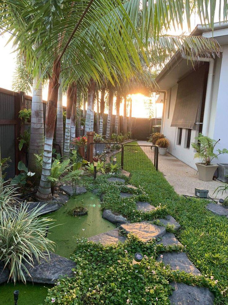 Frog pond   Patio, Outdoor decor, Plants