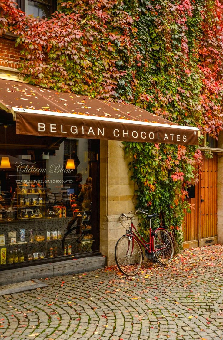 28 best belgian chocolate images on pinterest chocolate lovers chteau blanc chocolate store in antwerp belgium solutioingenieria Gallery