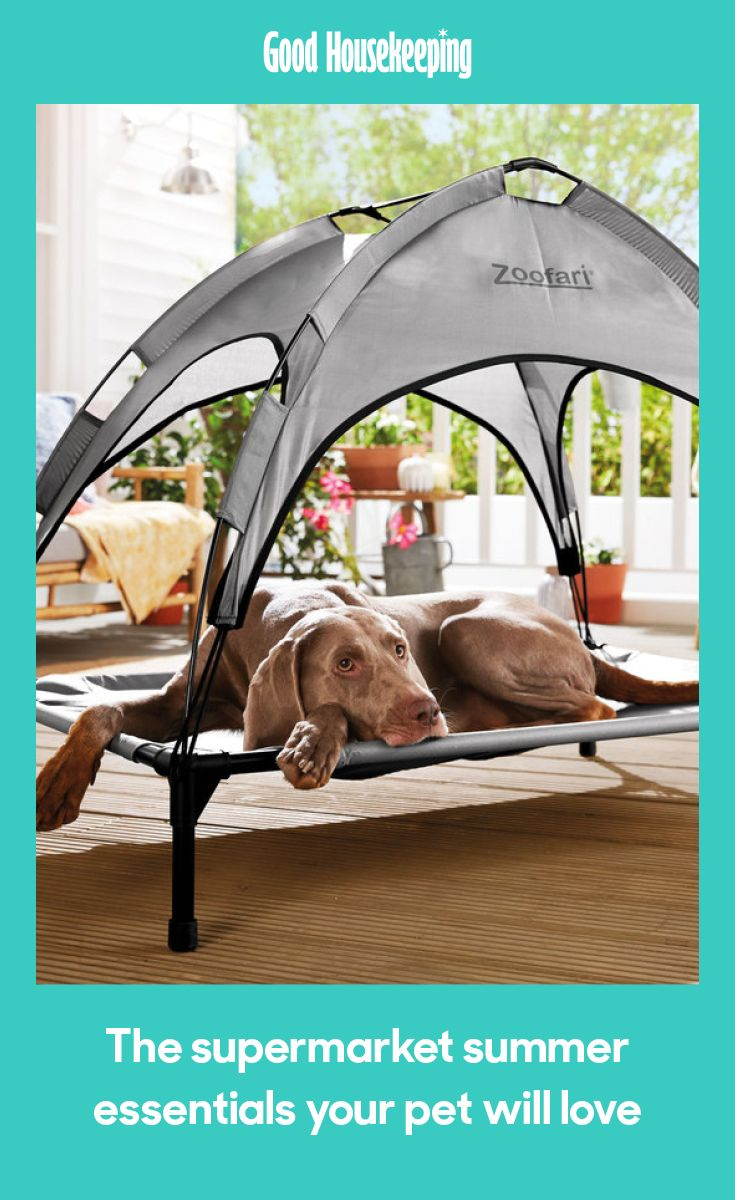 Lidl is selling a dog bed with a sun shade ready for the