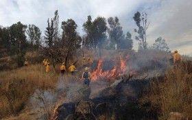 Fortalece Gobierno de Oaxaca acciones de prevención y control de incendios forestales