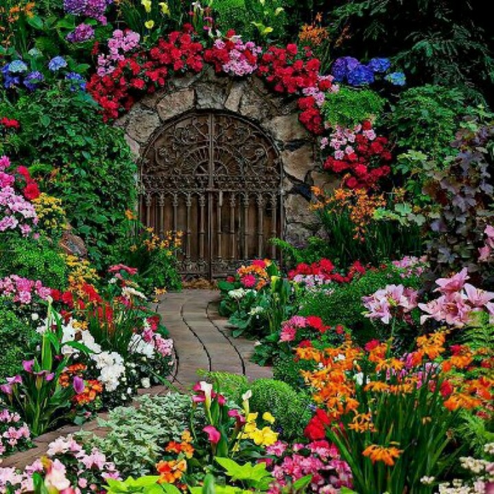 This looks a little too good to be true..probably a set up at a garden show..but lovely.