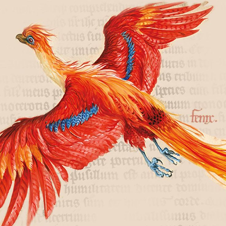 We're delighted to announce that #BLHarryPotter is heading to @NYHistory in 2018! As it travels from London to New York, the exhibition will evolve to include US specific artefacts and items from US Harry Potter publisher @scholasticinc's own collection.  Follow the link in our bio to find out more from our friends @Pottermore.  #HarryPotter20 #HarryPotter #London #NewYork #Exhibition