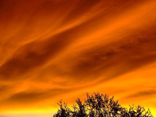 Suburban Sunset, Johannesburg.