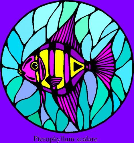 17 best images about stain glass fish on pinterest glass for Stained glass fish patterns