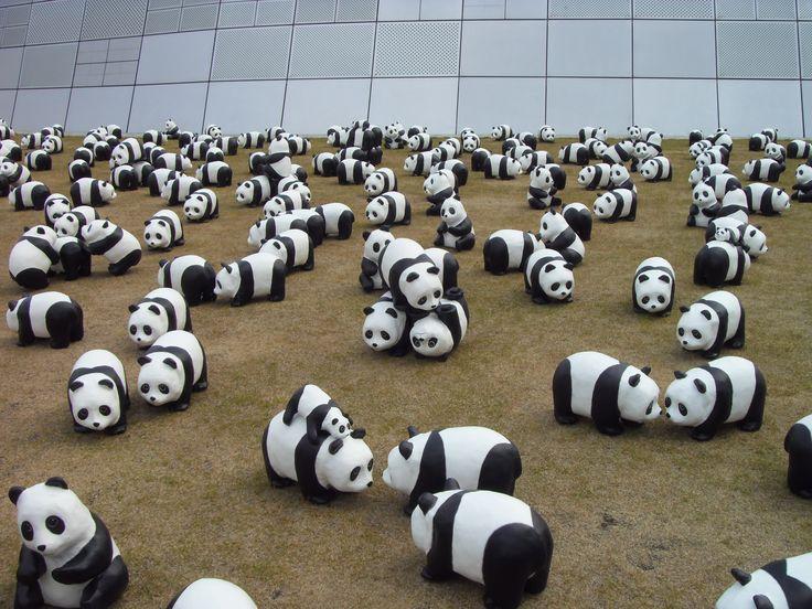 1600 panda+ at 동대문 DDP 디자인플라자
