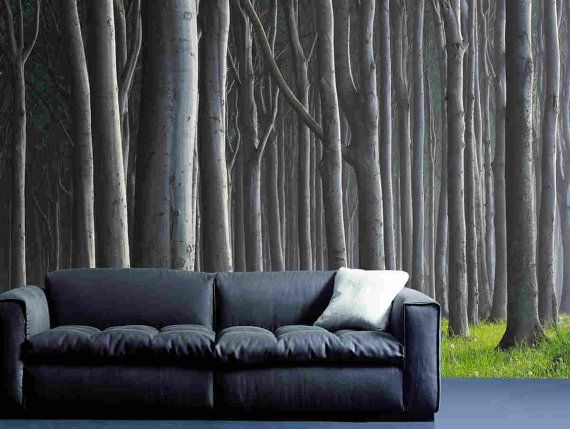 Beech Forest wall mural, Pre pasted Washable and dry strippable wall paper, wall covering on Etsy, $395.00