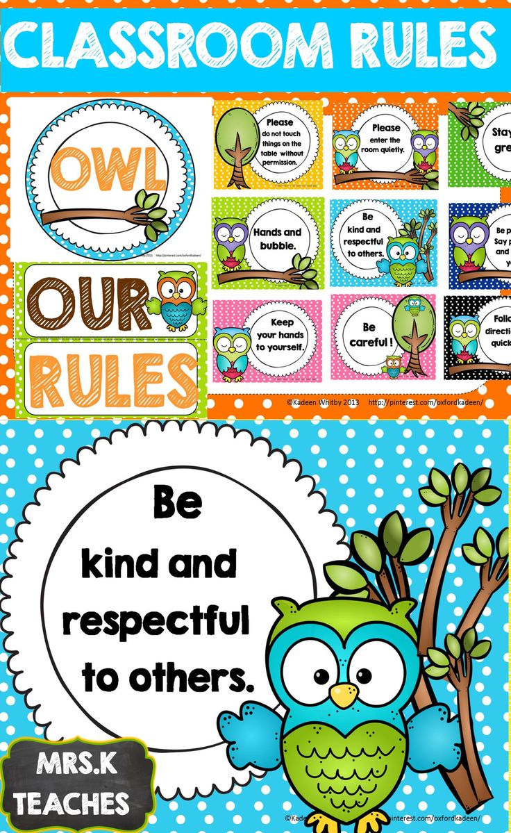 CLASSROOM THEMES- CLASSROOM RULES(OWL OUR RULES SET) EDITABLE