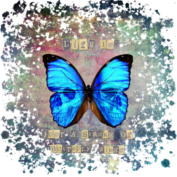 Collage 1 - butterfly wings by AgataRus on DeviantArt  #aphorism #butterfly #collage #collageart #dark #darkart #print #tshirt