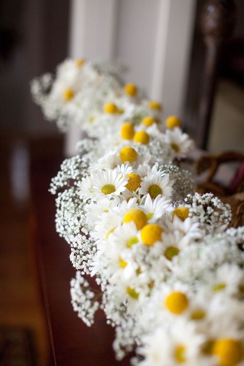 row of daisy + baby's breath bundles down the center of the table