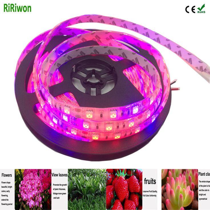 5 m LED Usine élèvent bande élèvent la lumière Imperméable À L'eau 5050 SMroponic SyD Hydstems croissante 300 LEDS 72 W spectre Complet plante de croissance lumière