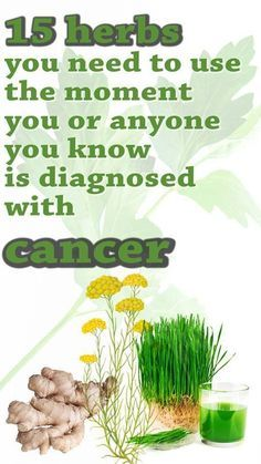 15 herbs you need to use the moment you or anyone you know is diagnosed with cancer