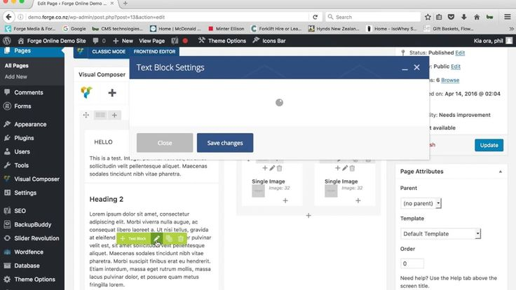 FORGE WORDPRESS WEBSITE TUTORIAL - MAKING TEXT CHANGES