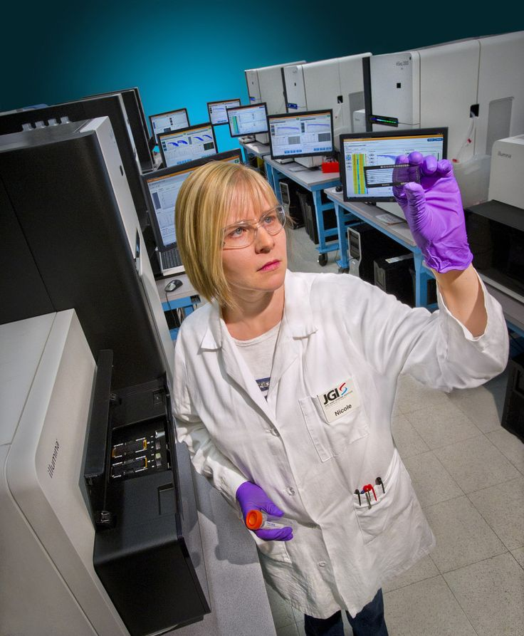 Scientists Sequence Novel Bacterial Ecosystems of 396 Human Intestines